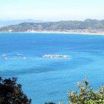 大房岬からの眺望