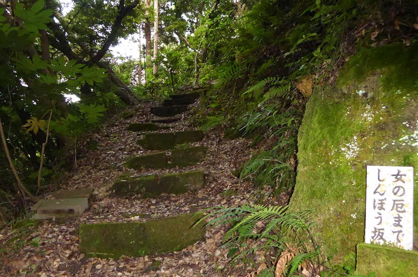 高野山霊場八十八ヶ所の登り坂