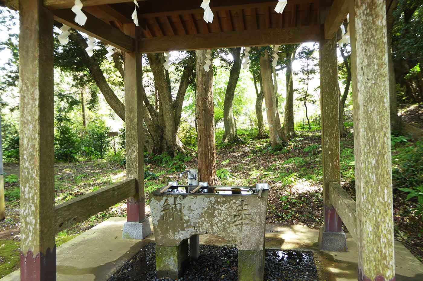 諏訪神社の手水石