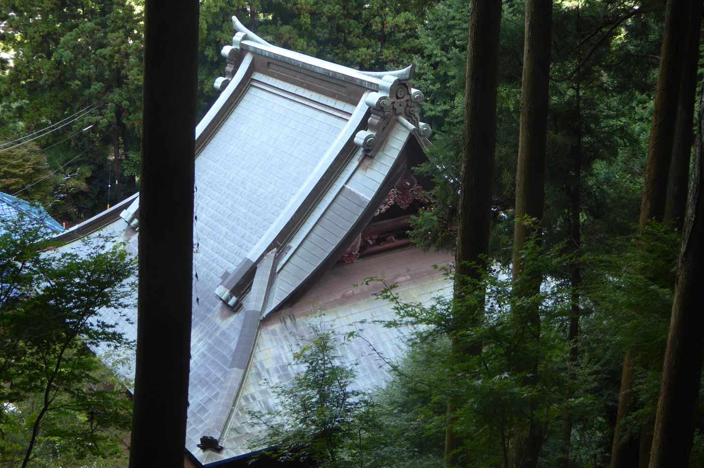 高蔵神社から見た大山不動