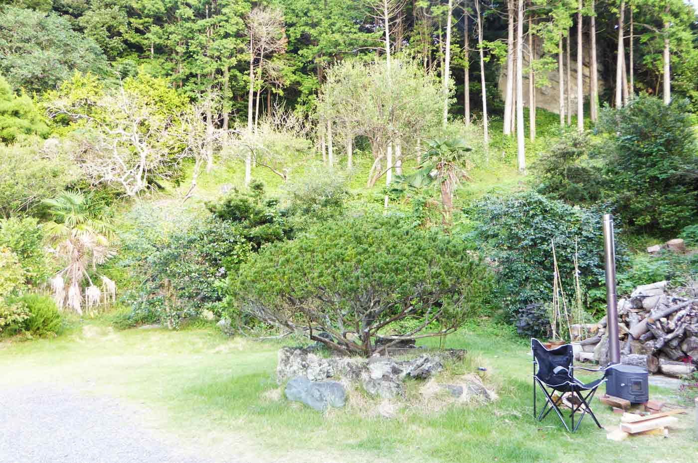 岩峰庵の庭