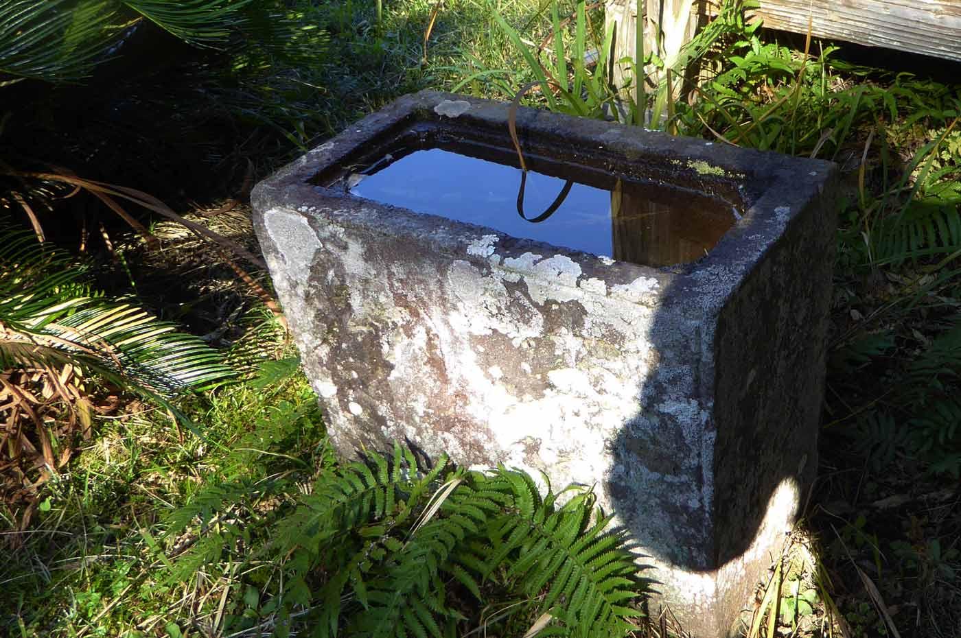 宝幢院の手水石