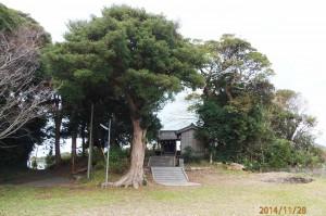 根之神社の境内