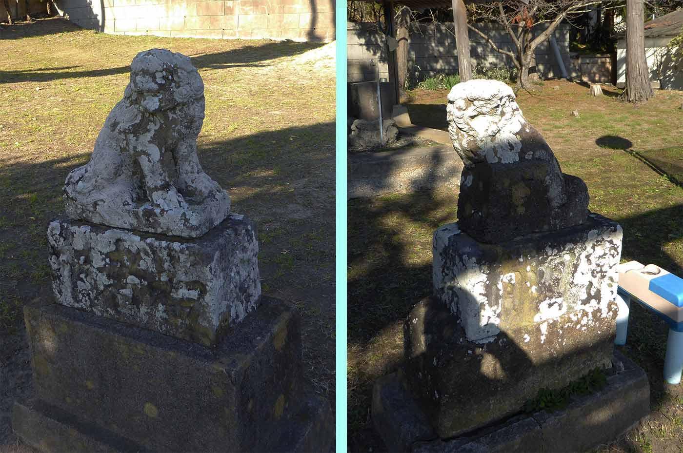 青根原神社の最初の狛犬の画像
