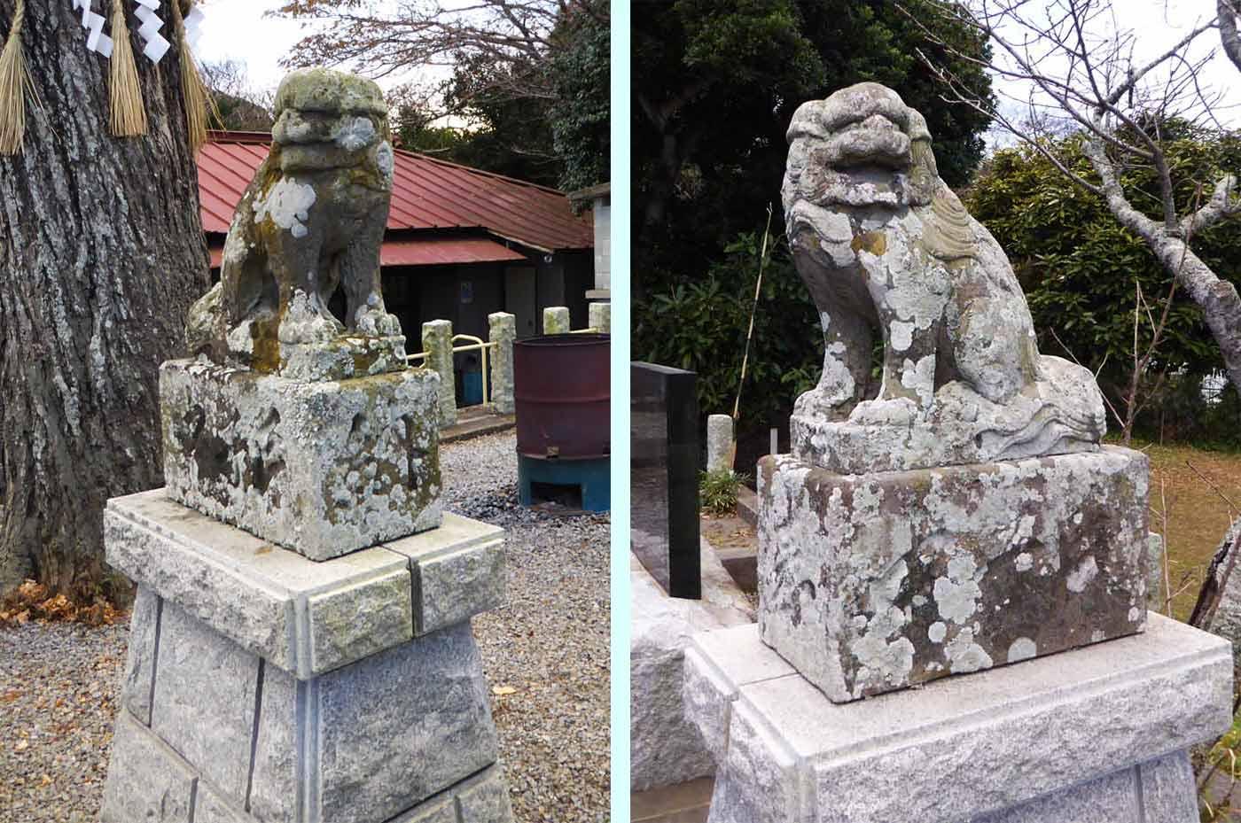 国司神社の狛犬の画像