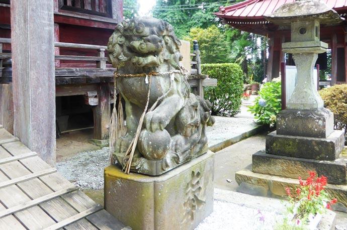 大山寺の狛犬 右