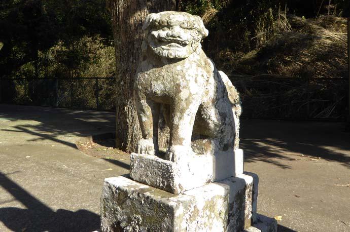 熊野神社の狛犬(右)