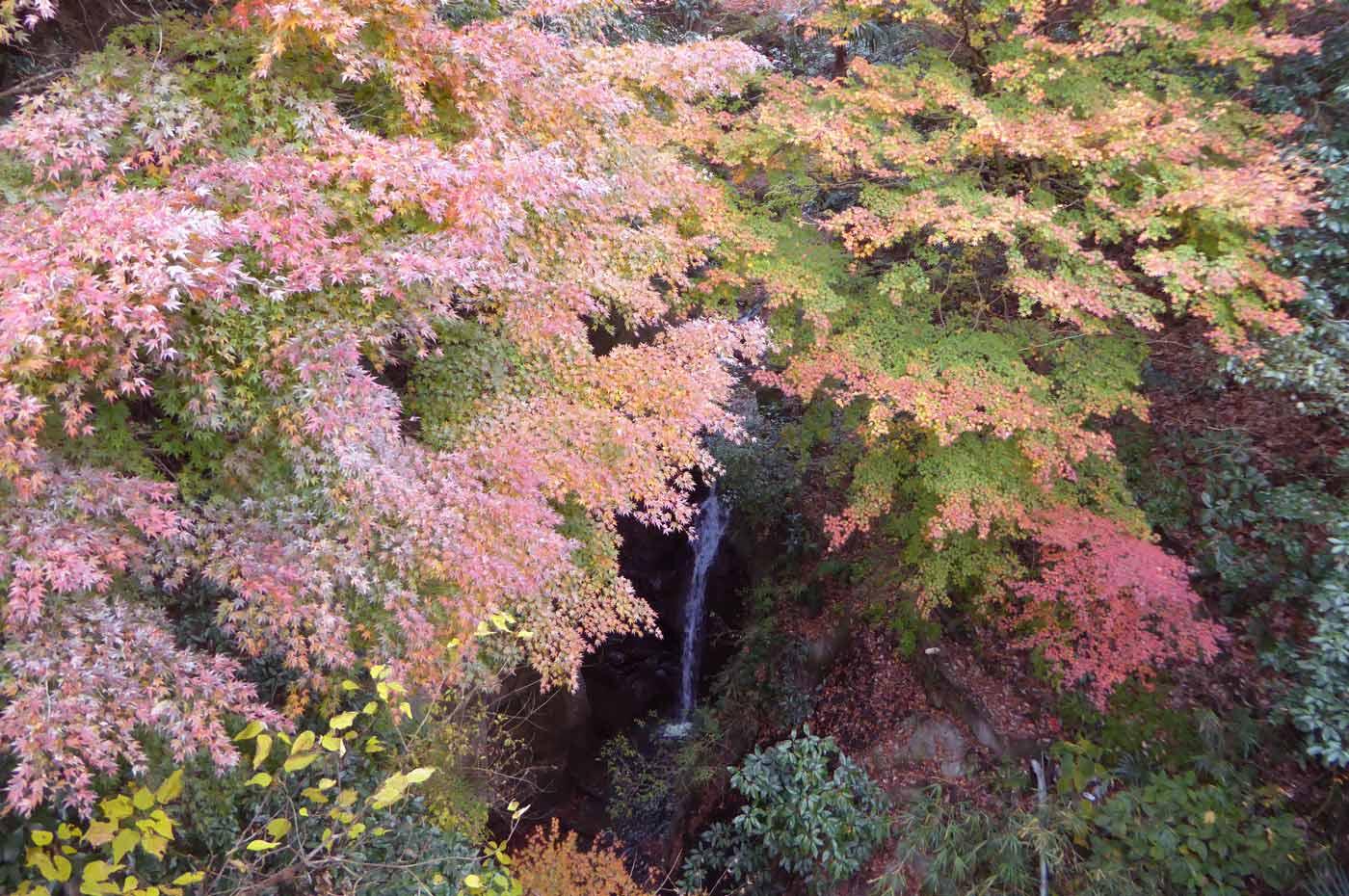 地蔵堂の滝の画像