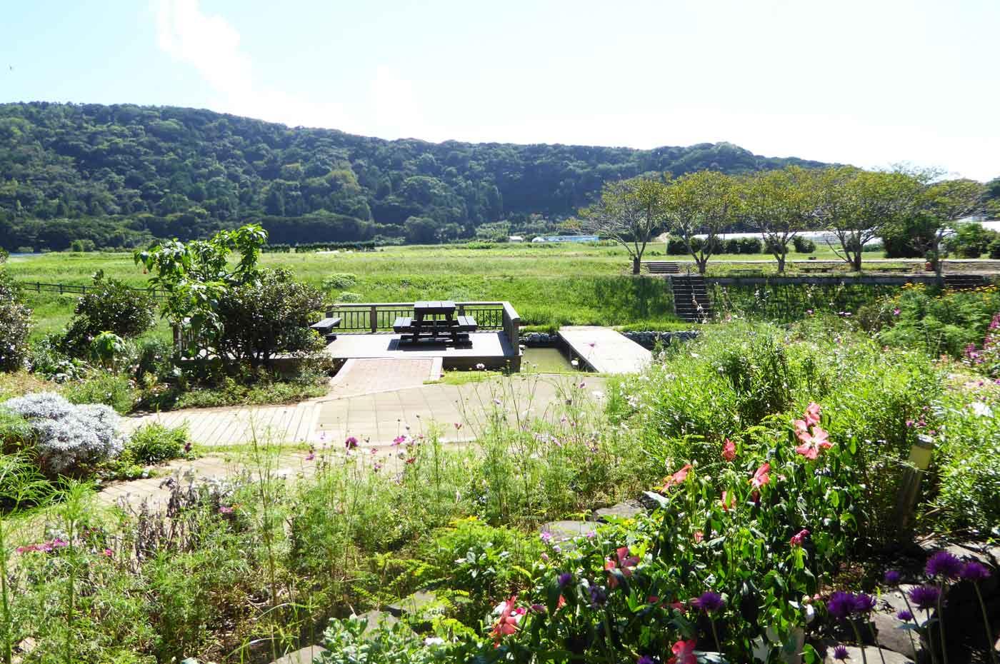道の駅とみうら枇杷倶楽部の庭園の画像