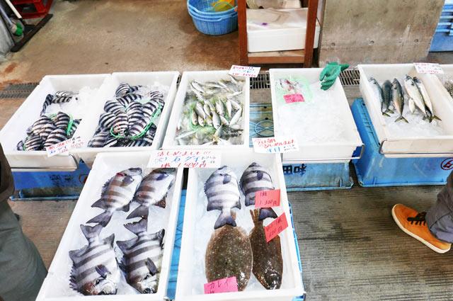 利左エ門の鮮魚コーナー画像