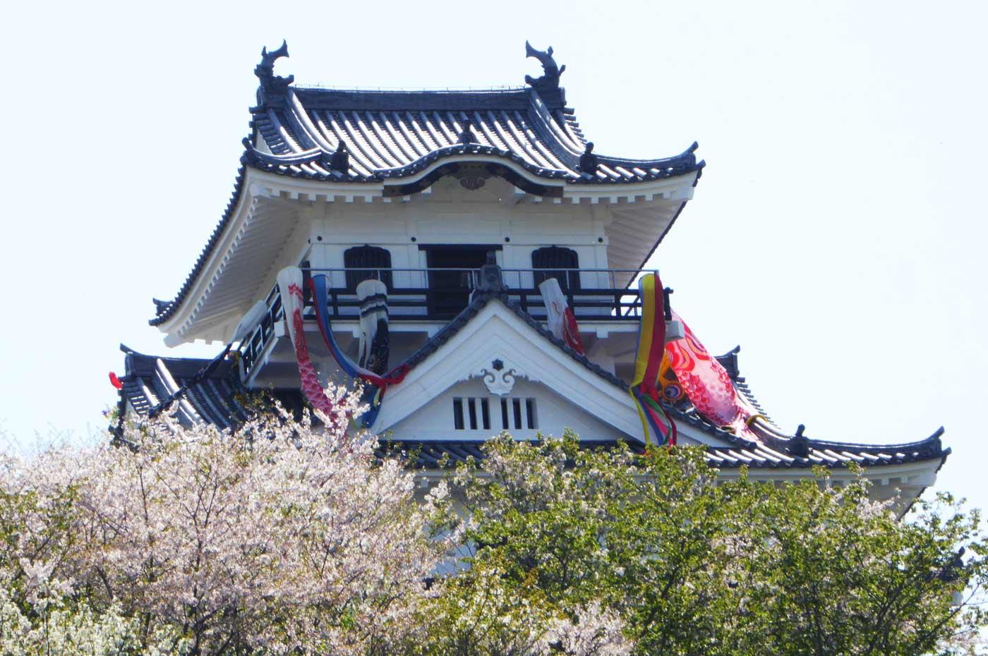 館山城のアップ画像