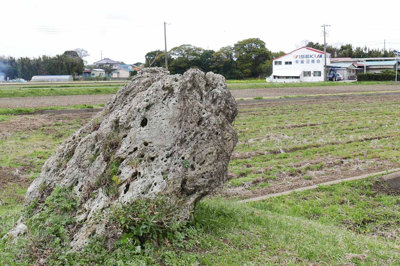 狐塚の石の画像