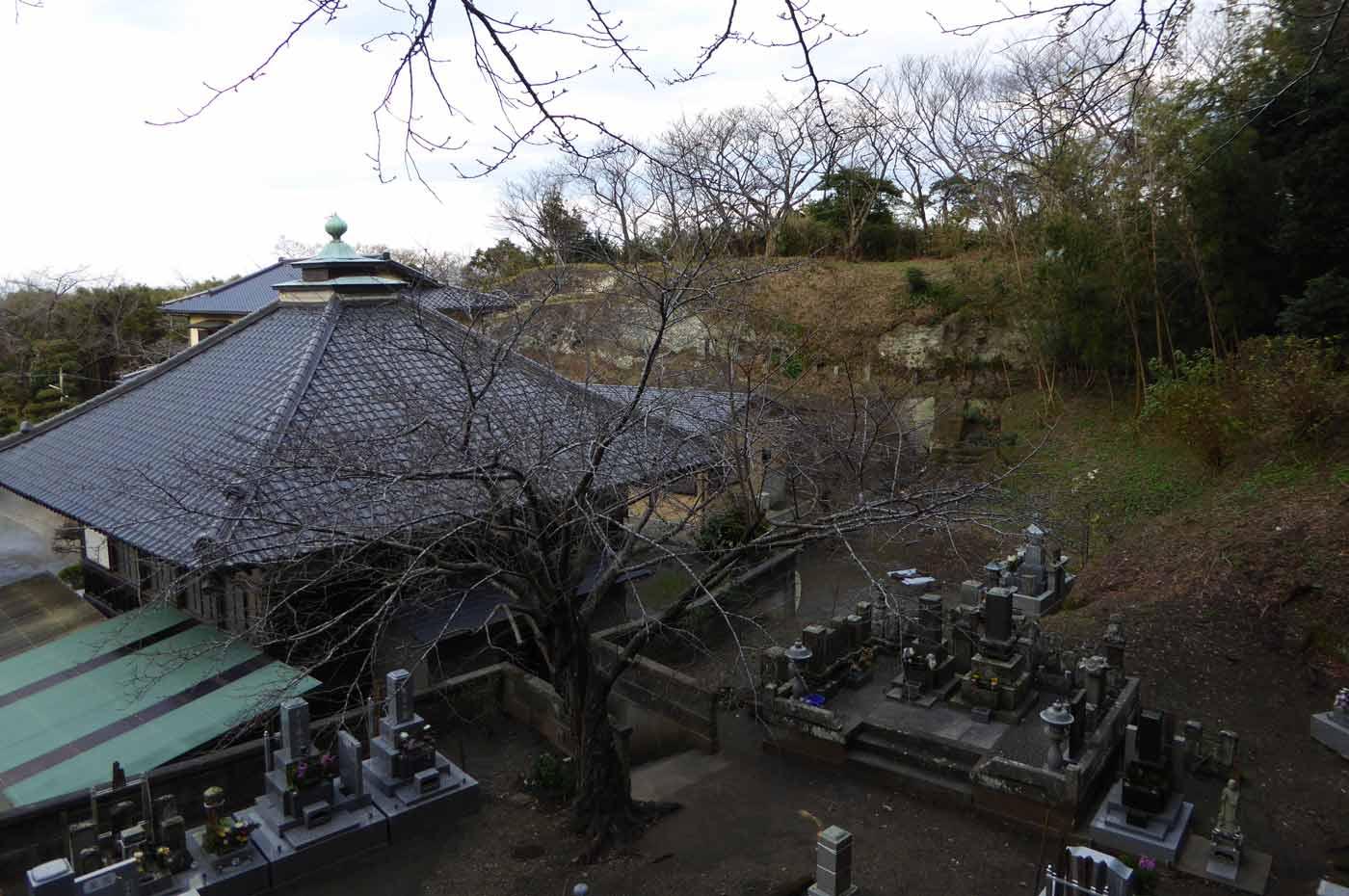 諏訪神社の境内から見た光明院