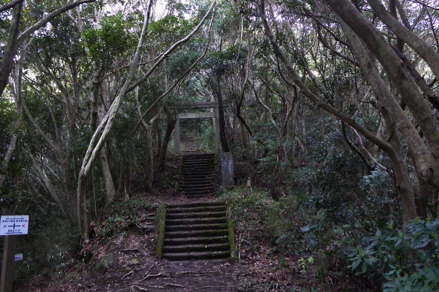 高塚山への階段