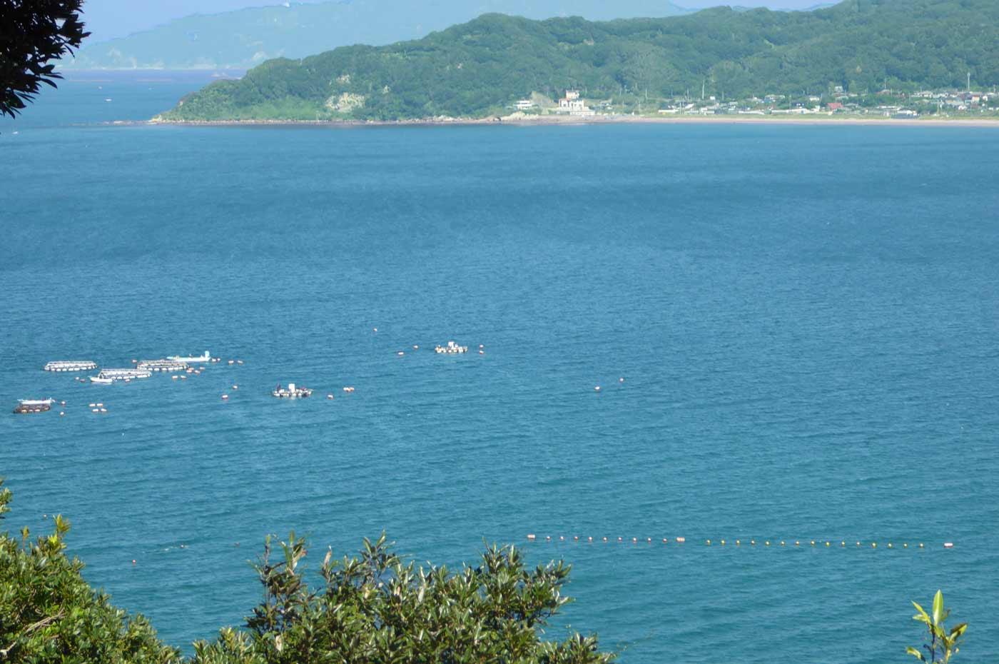富浦湾のボート釣り風景