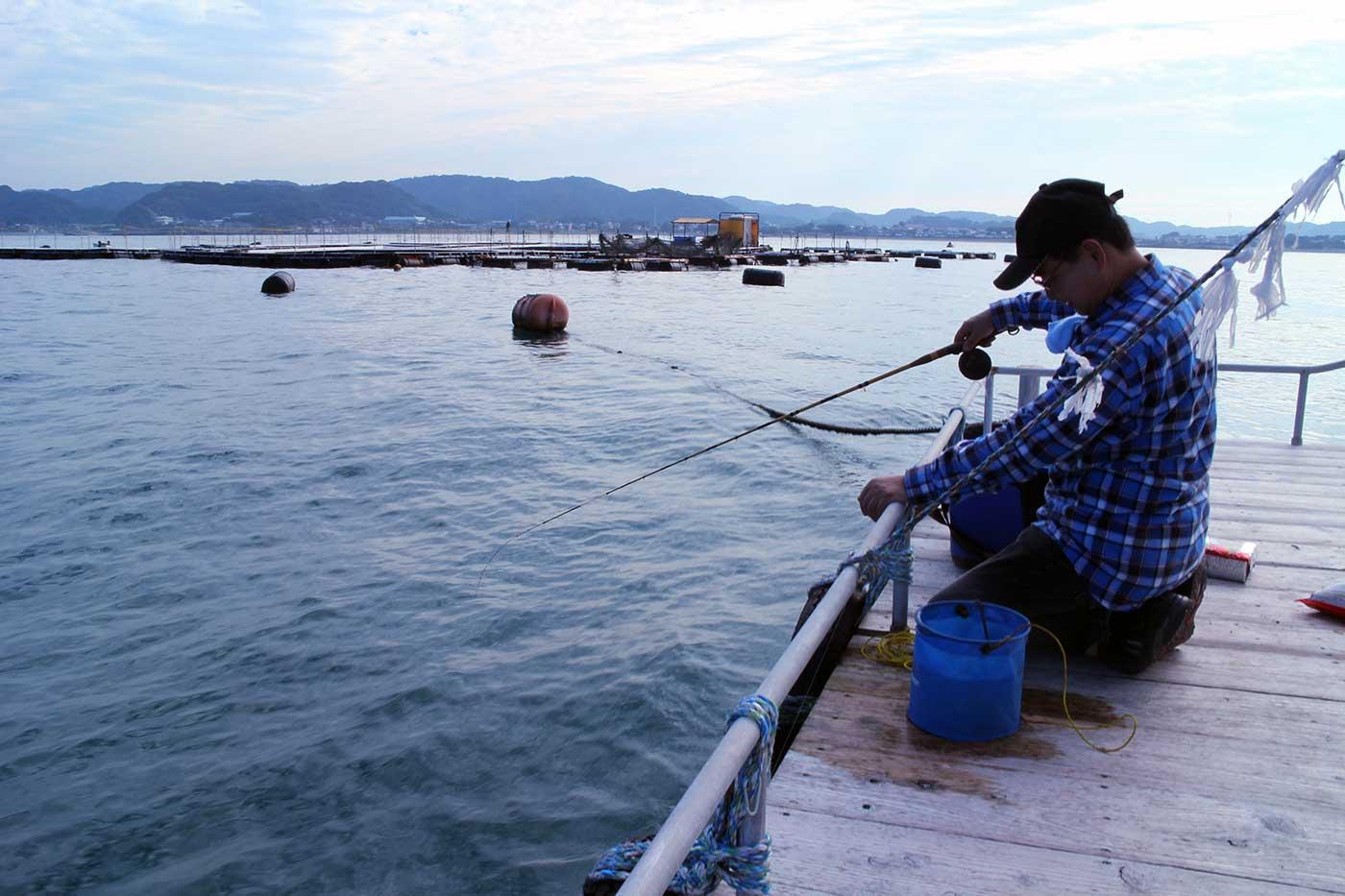 かかり釣りの画像