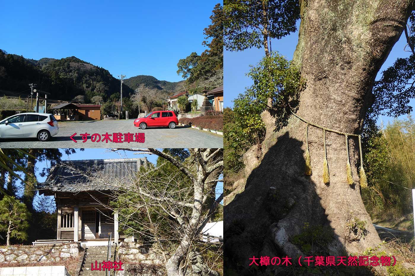 自然の宿くすの木 山神社と大樟の木