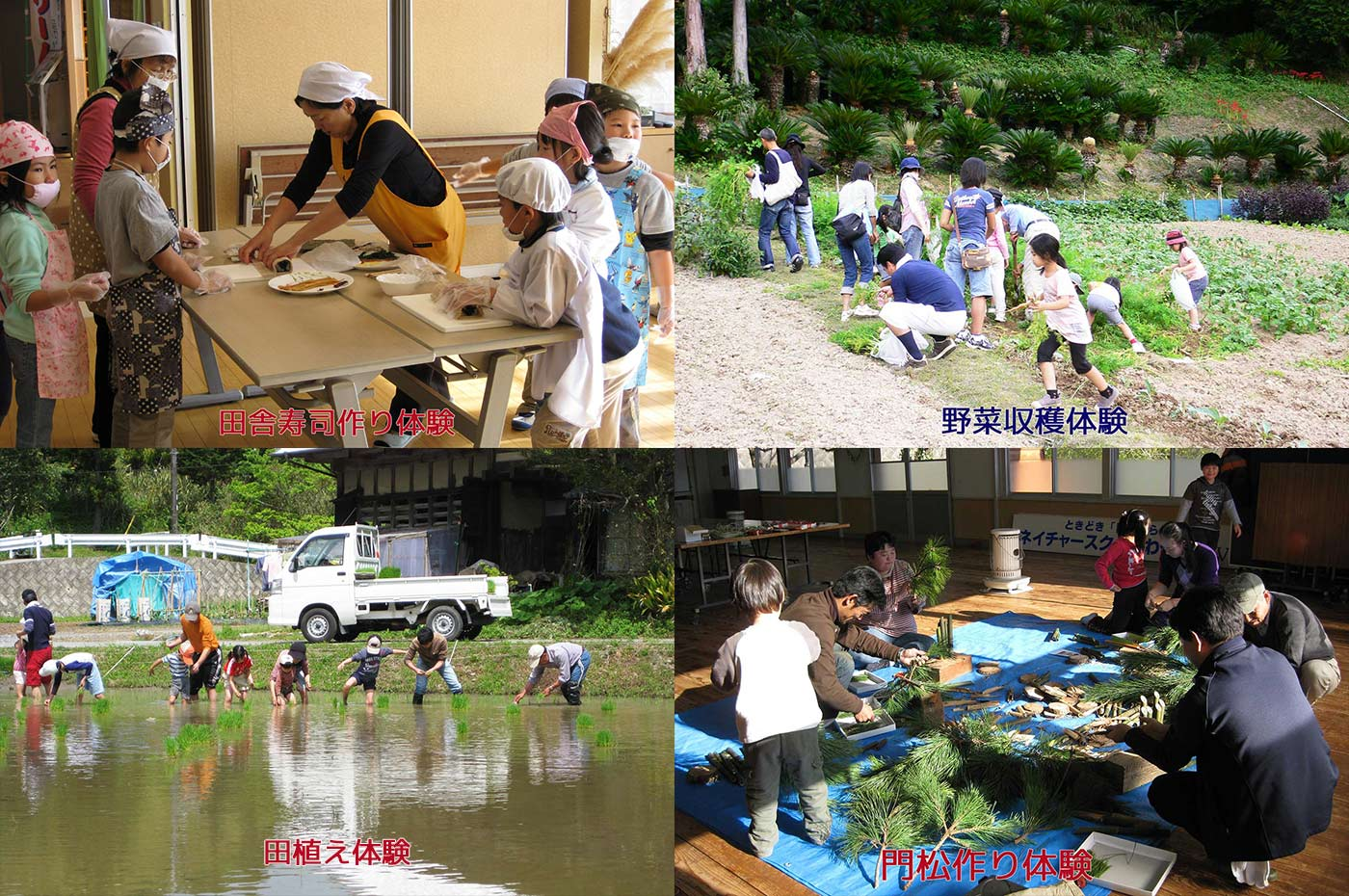 自然の宿くすの木 寿司作り体験/収穫体験/田植え体験/竹細工体験