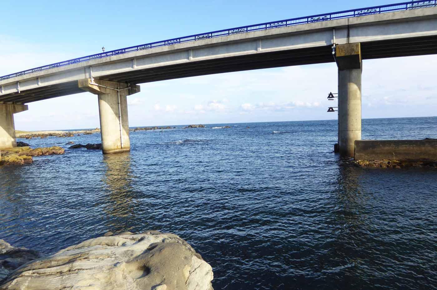 白間津大橋下の磯