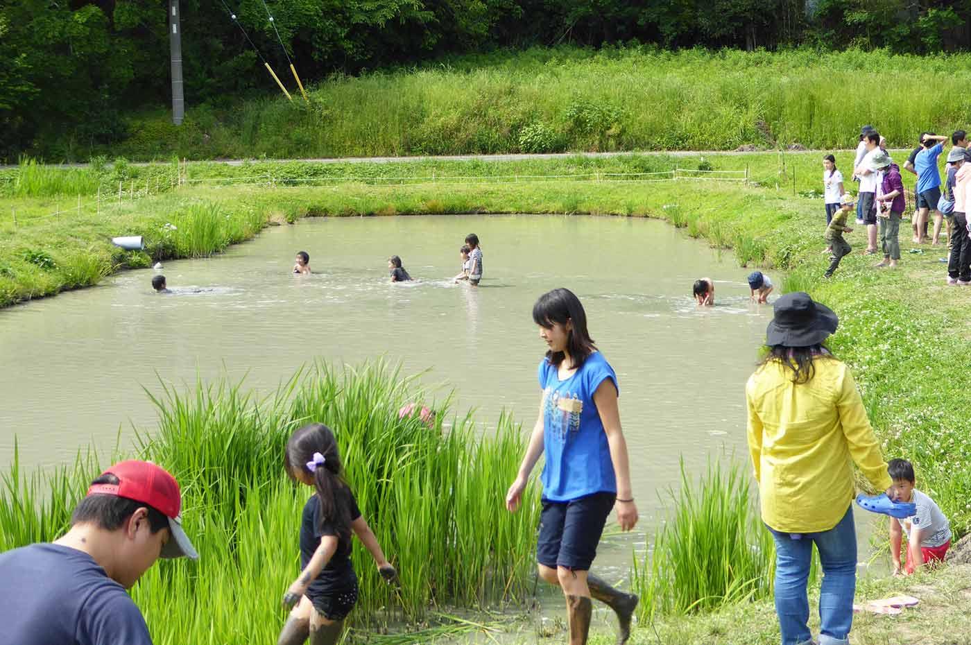 里山わんぱく塾 田んぼで水泳大会