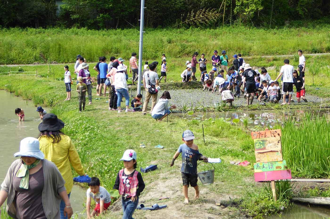 里山わんぱく塾の農作業風景