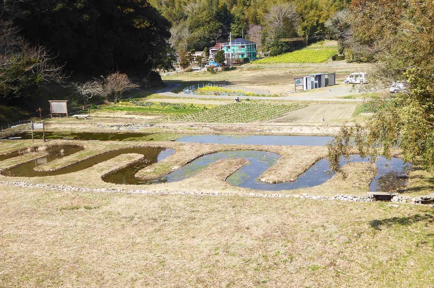 中堰親水公園 の水生生物生息池