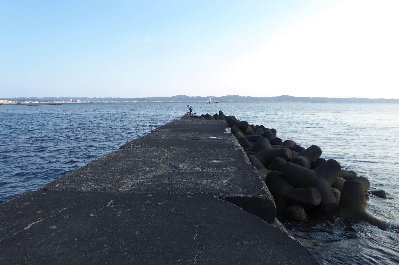 丸山堤防の全景