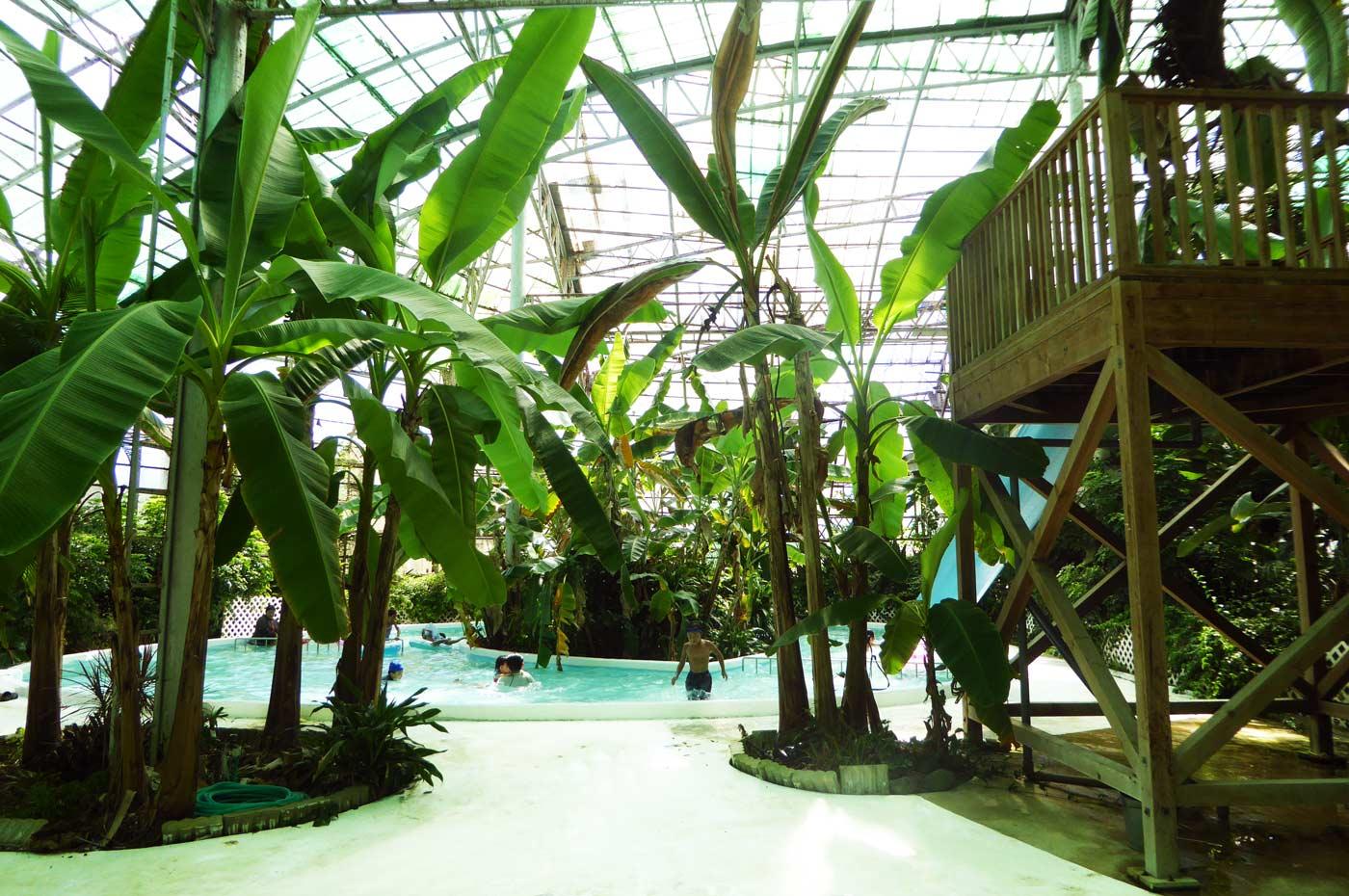 白浜フラワーパークの屋内プール