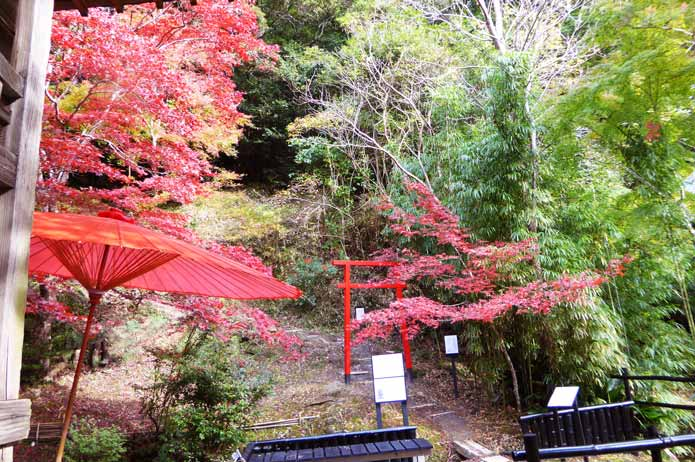 小松寺の白山社入口の画像