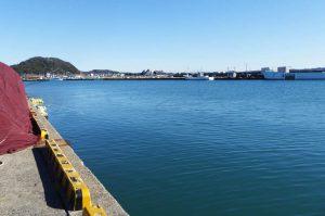 船形港の魚市場前の岸壁