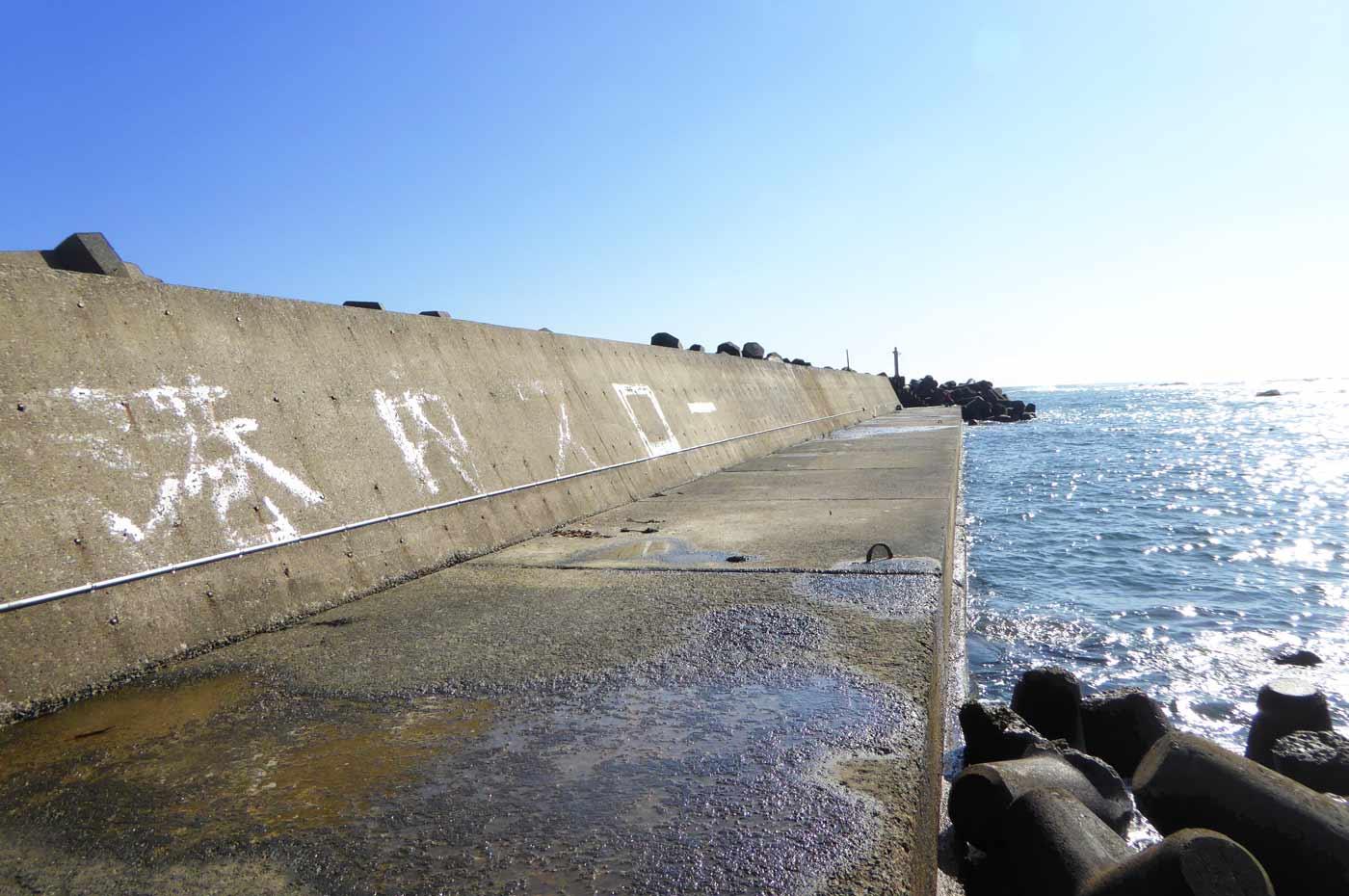 太夫崎の左側堤防先端のポイント