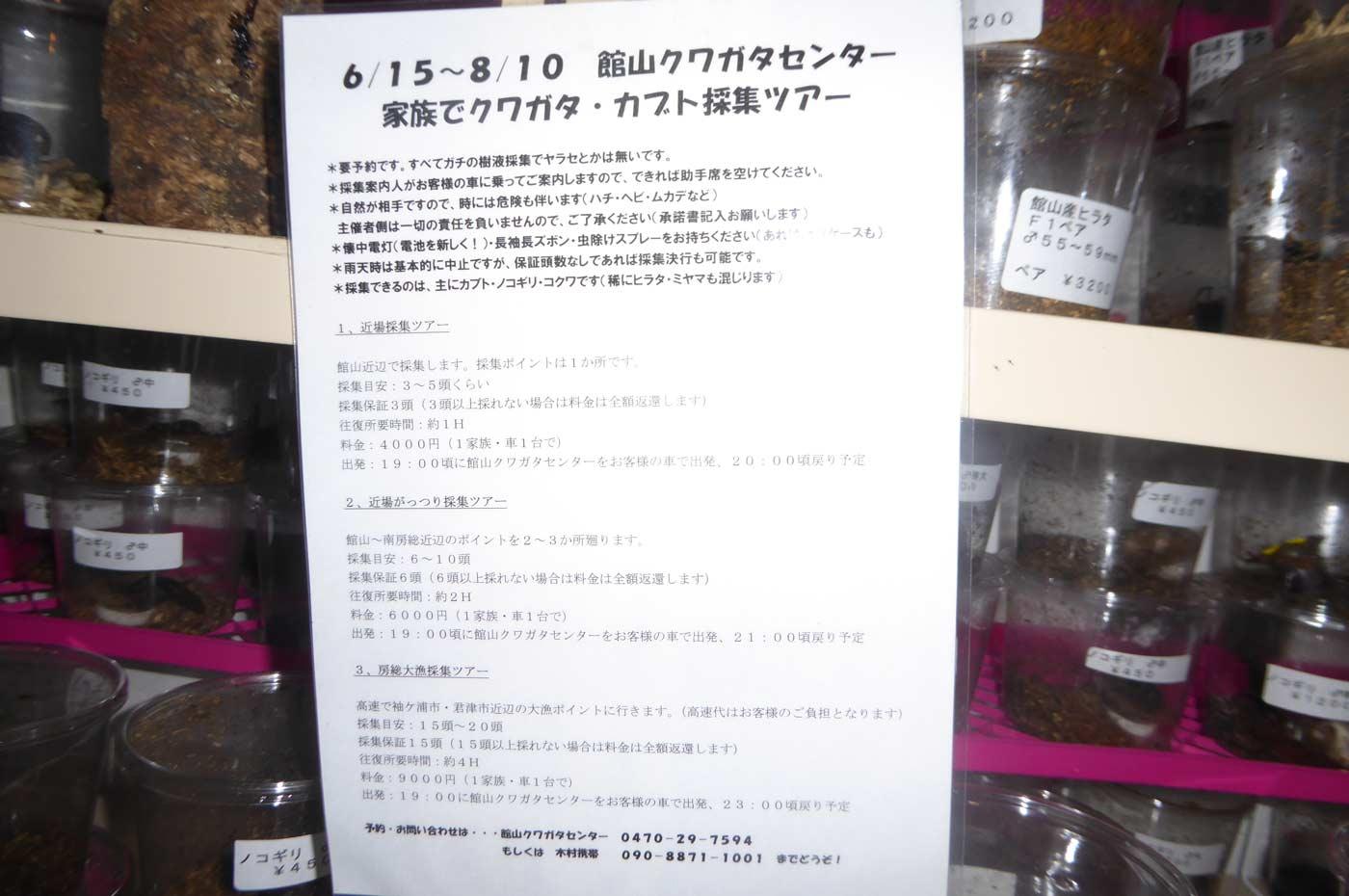 館山クワガタセンターのクワガタ採集ツアー