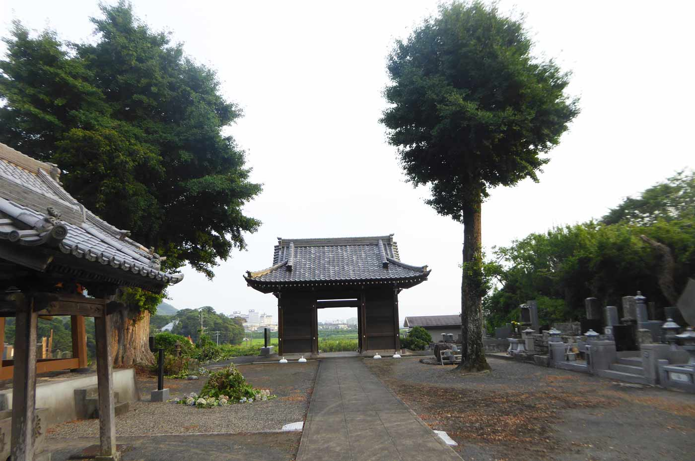 西蓮寺境内から内浦を見渡す