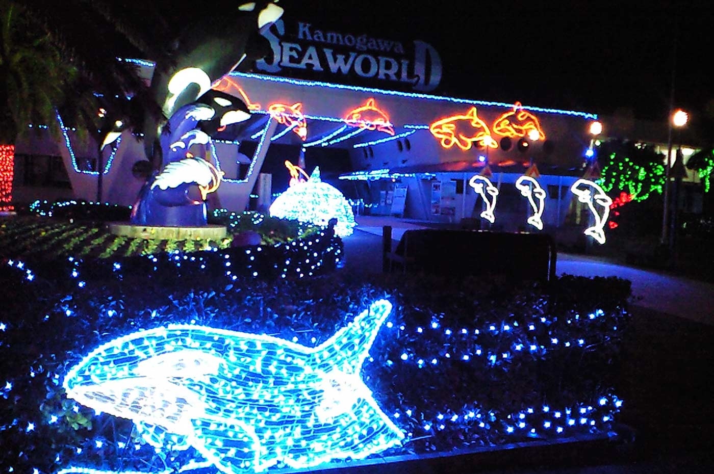 鴨川シーワールドの夜景