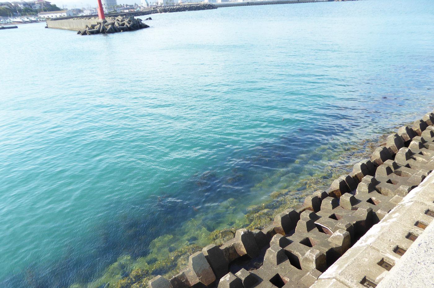 堤防先端内側のポイント