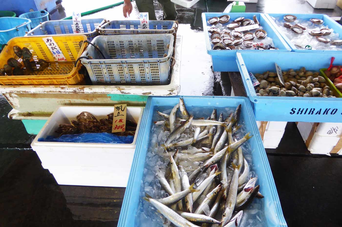 漁協の鮮魚売り場