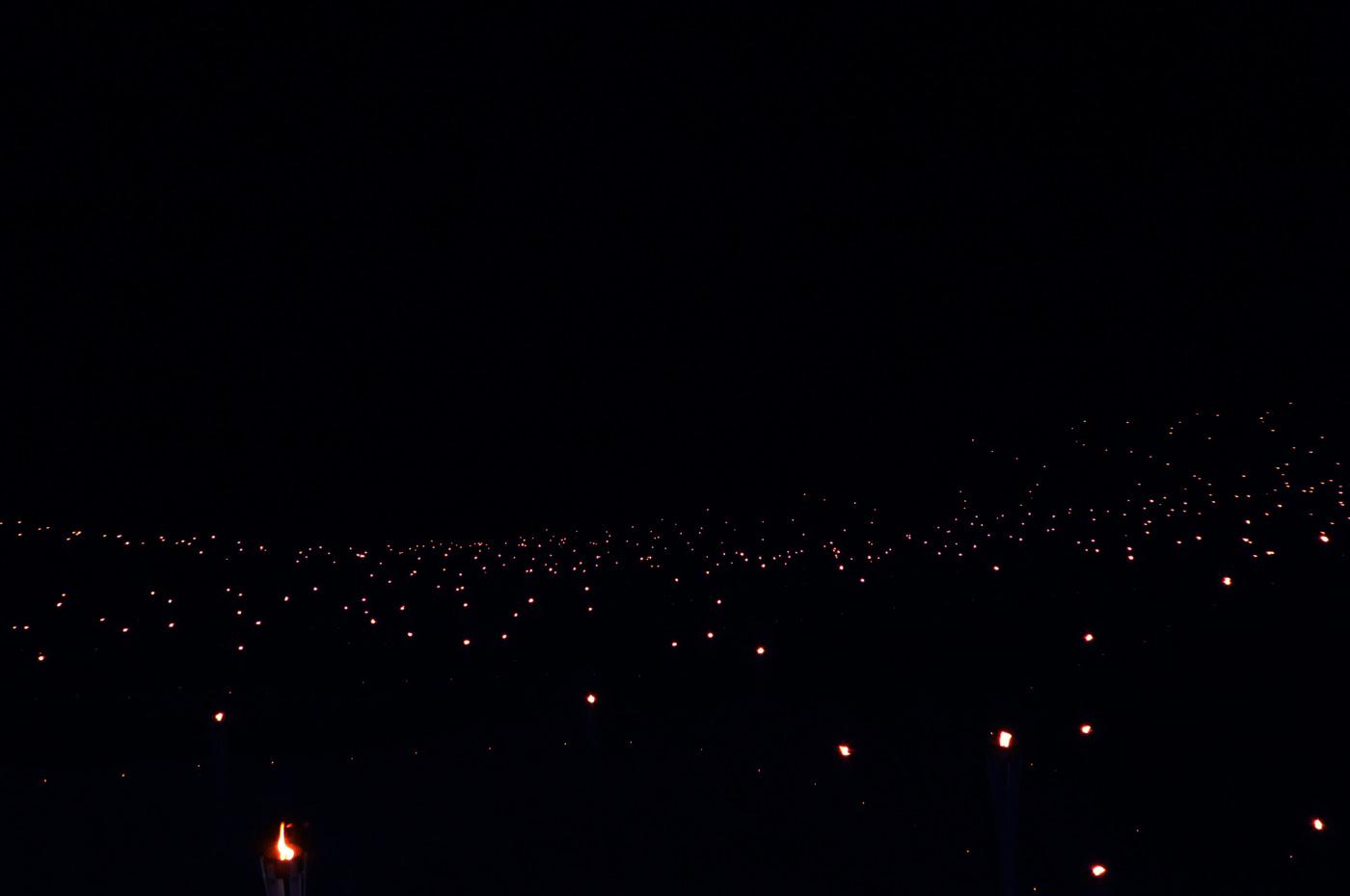 日没後の棚田の画像