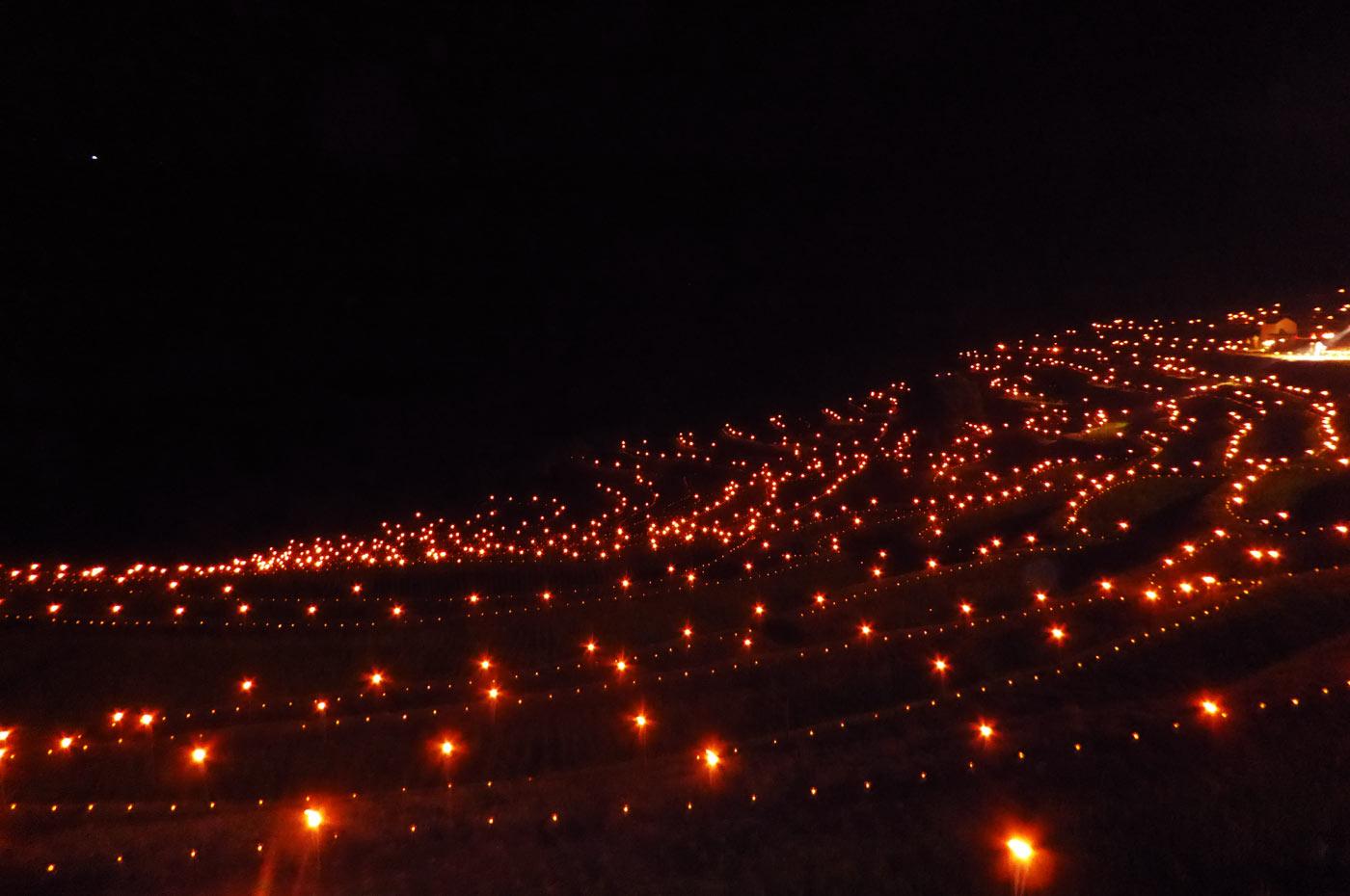 ライトアップされる棚田の画像