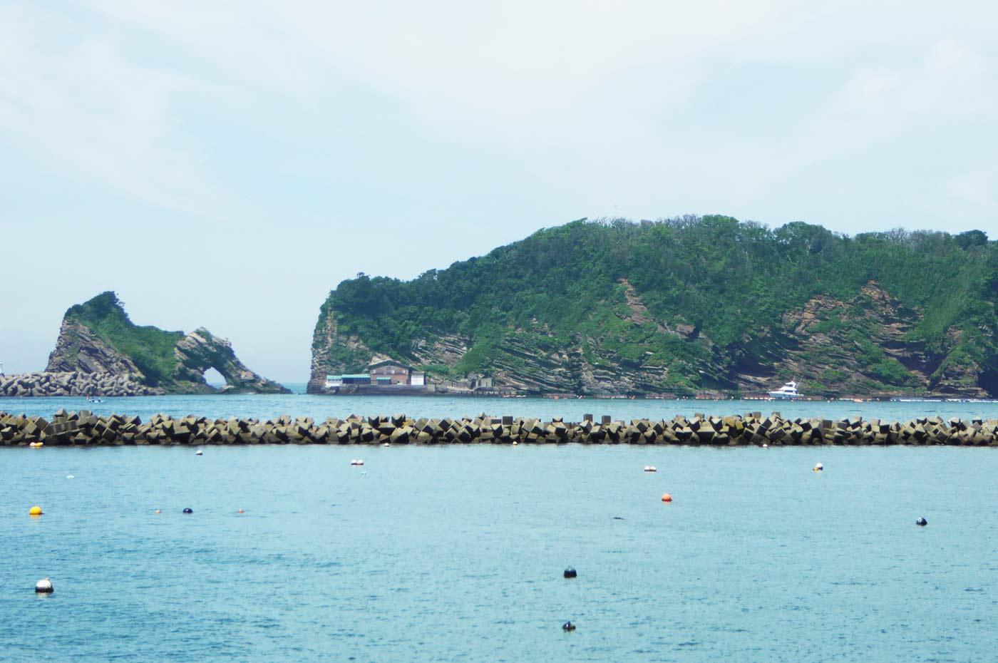 浮島の写真