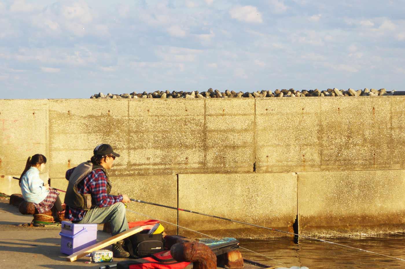 乙浜港の団子釣りの様子