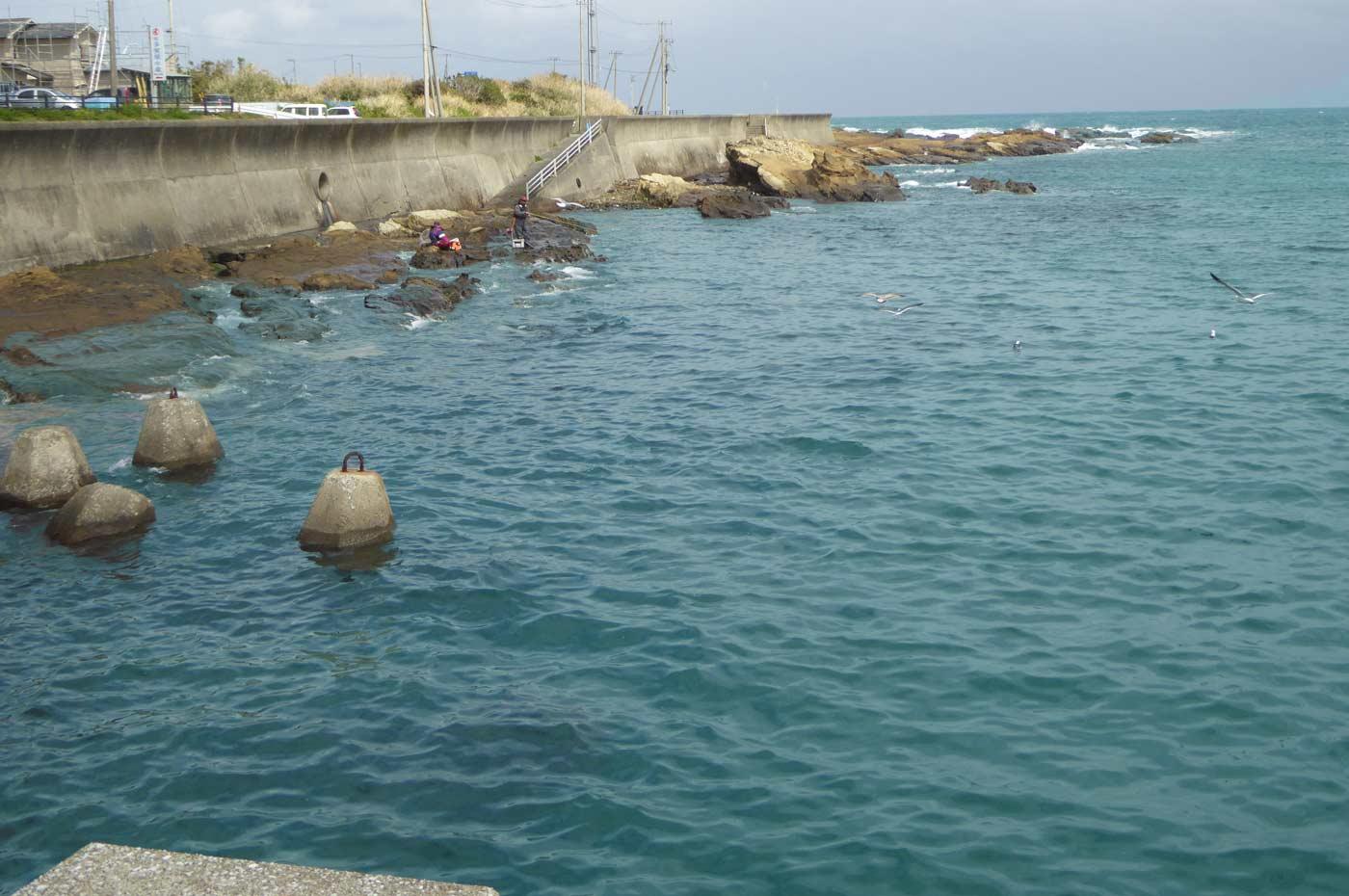乙浜港の磯釣り場