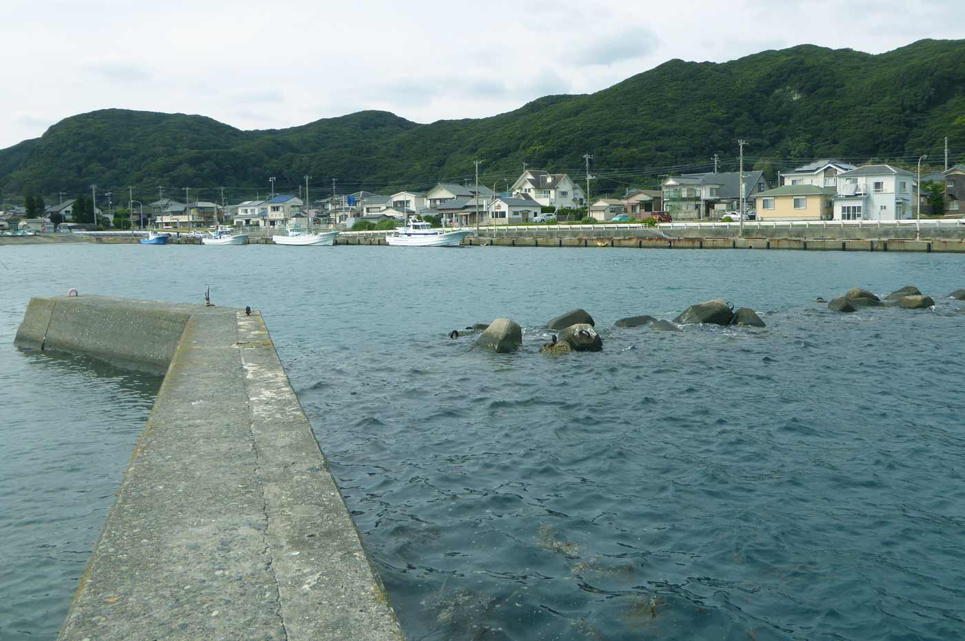 乙浜港の小突堤のテトラ