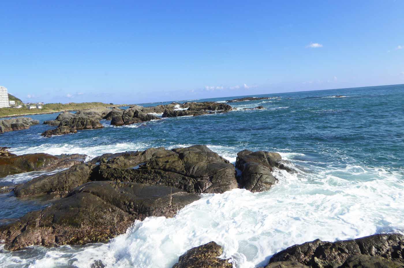 江見港の前島のポイント