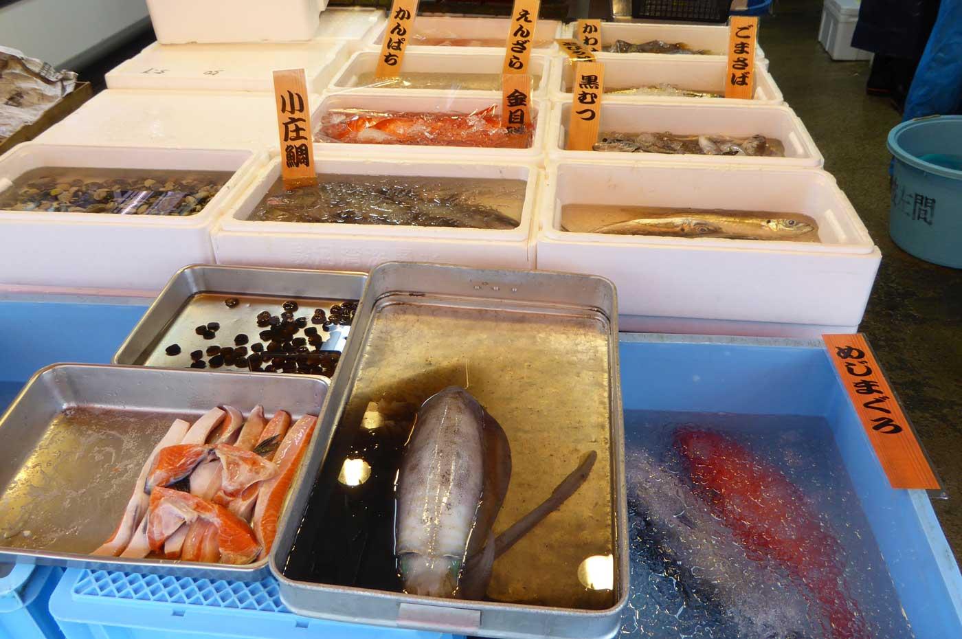 かんぱち・エンザラ・金目鯛・コショウ鯛・黒むつ・メジマグロの写真