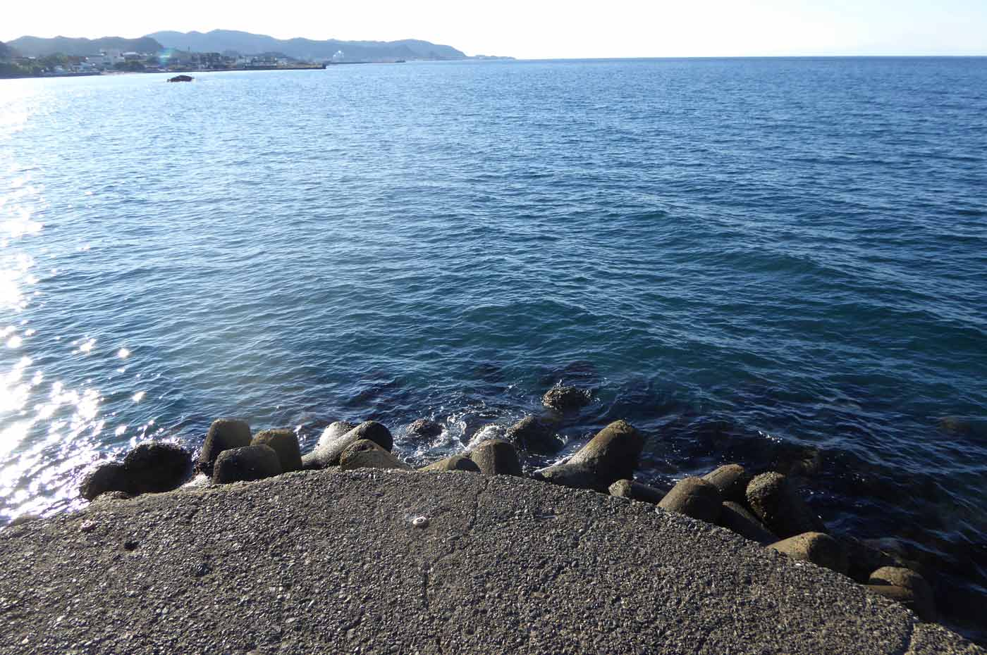 大賀堤防先端のポイント