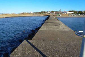 大賀堤防の写真