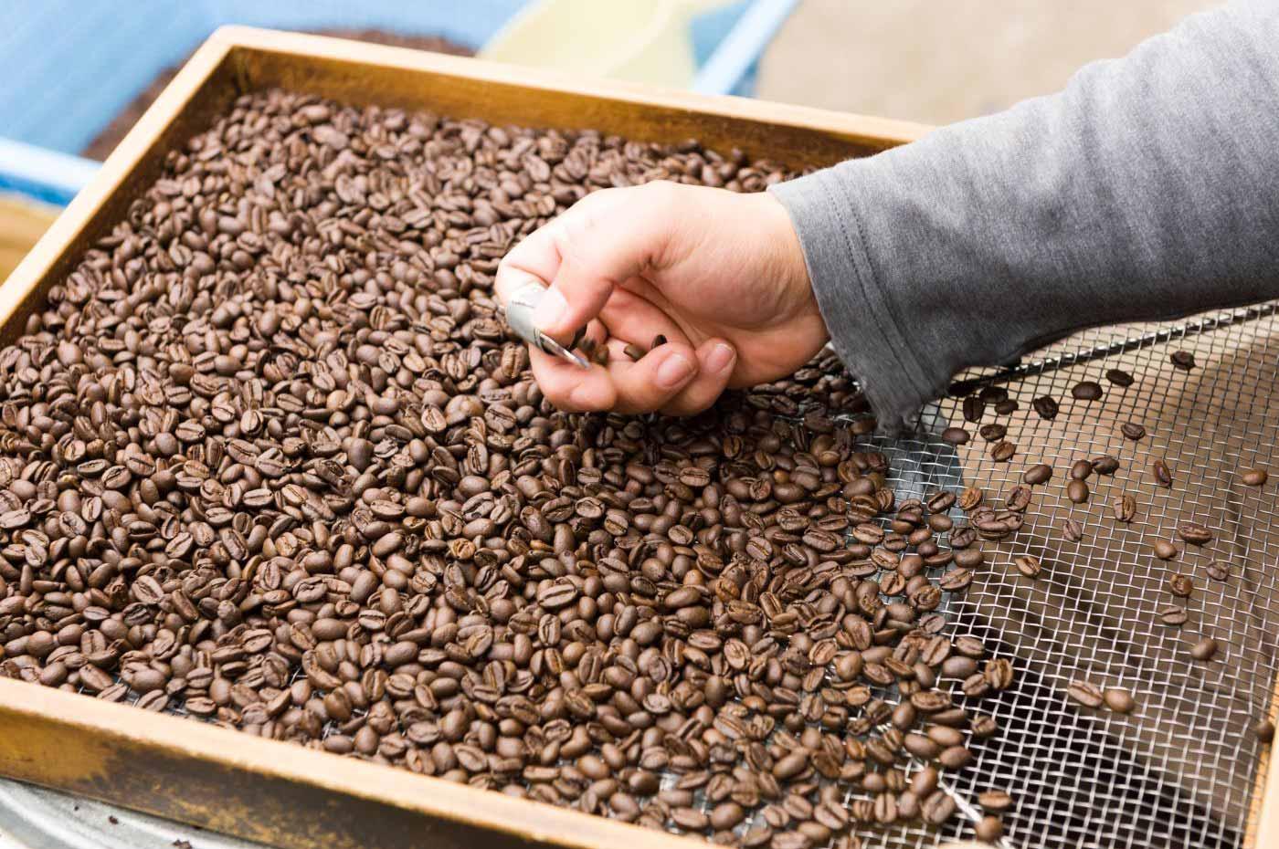 房総館山・老舗コーヒーショップ・サルビア・コーヒー豆の餞別1