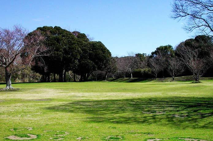 大房岬運動公園の写真