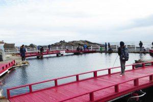 太海磯釣りセンターの写真