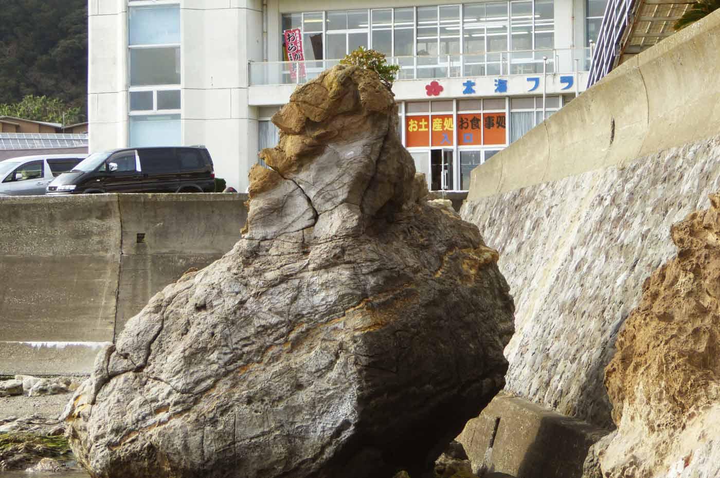 太海フラワーセンターのゴリラ岩の画像